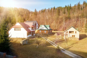 Black Forest homes for sale