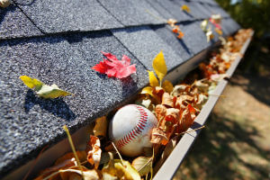 clean your gutters in the fall